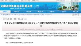 安庆吉港白鳍豚水泥有限公司日产600吨水泥熟料回转窑生产线产能出让的公告
